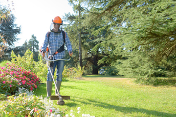 Landscape Gardeners Manchester Landscape gardeners in stockport manchester collins landscapes ltd along with this we can also assist in the removal of dead or deceased trees to prevent other trees on the surrounding area being affected workwithnaturefo